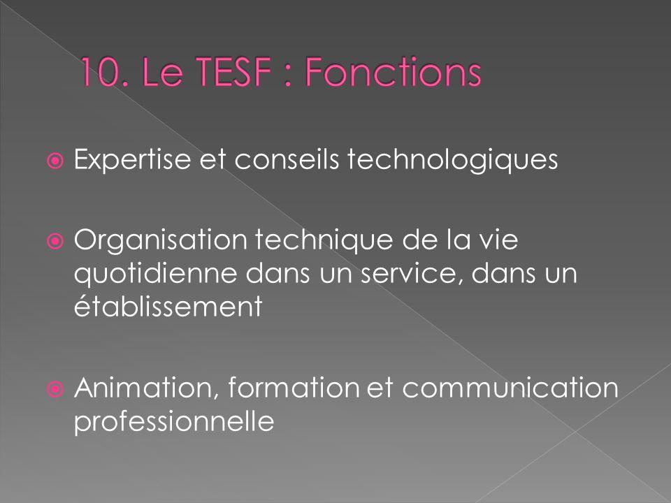 10. Le TESF : Fonctions Expertise et conseils technologiques
