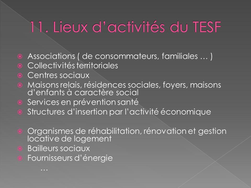 11. Lieux d'activités du TESF