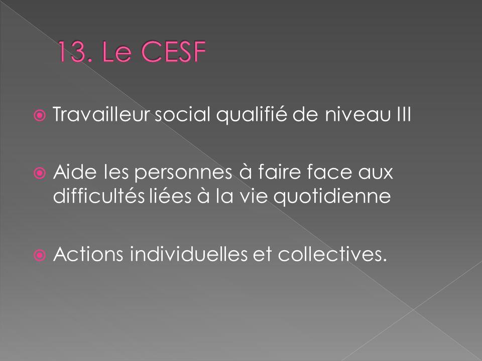 13. Le CESF Travailleur social qualifié de niveau III