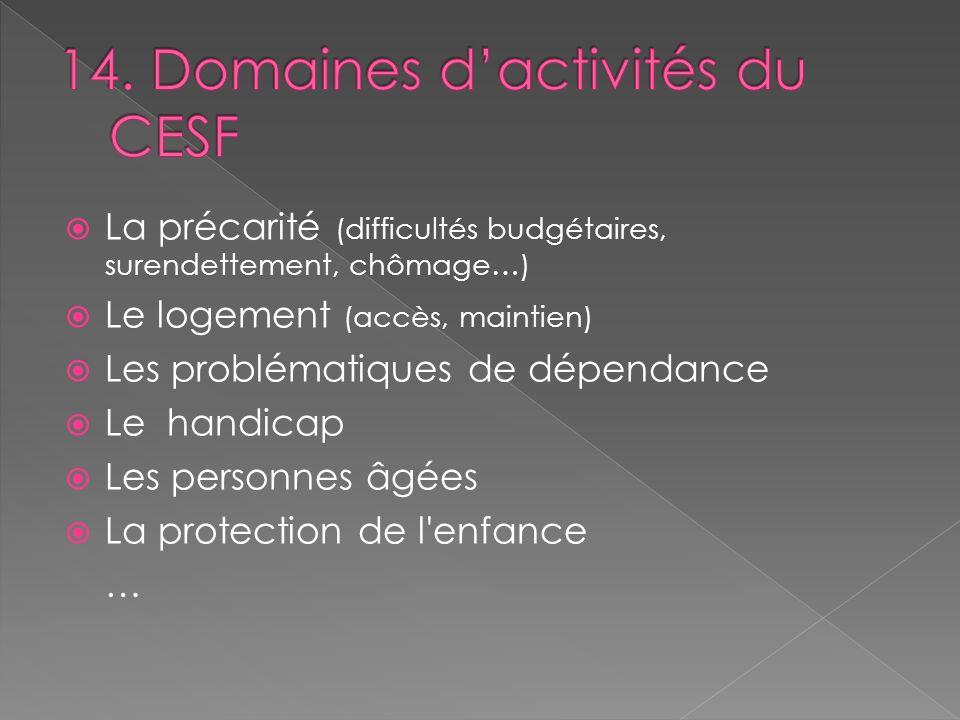 14. Domaines d'activités du CESF