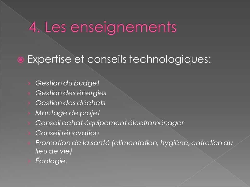 4. Les enseignements Expertise et conseils technologiques: