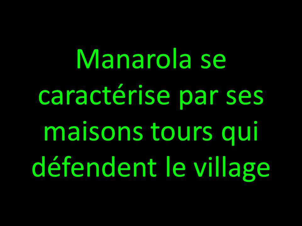 Manarola se caractérise par ses maisons tours qui défendent le village