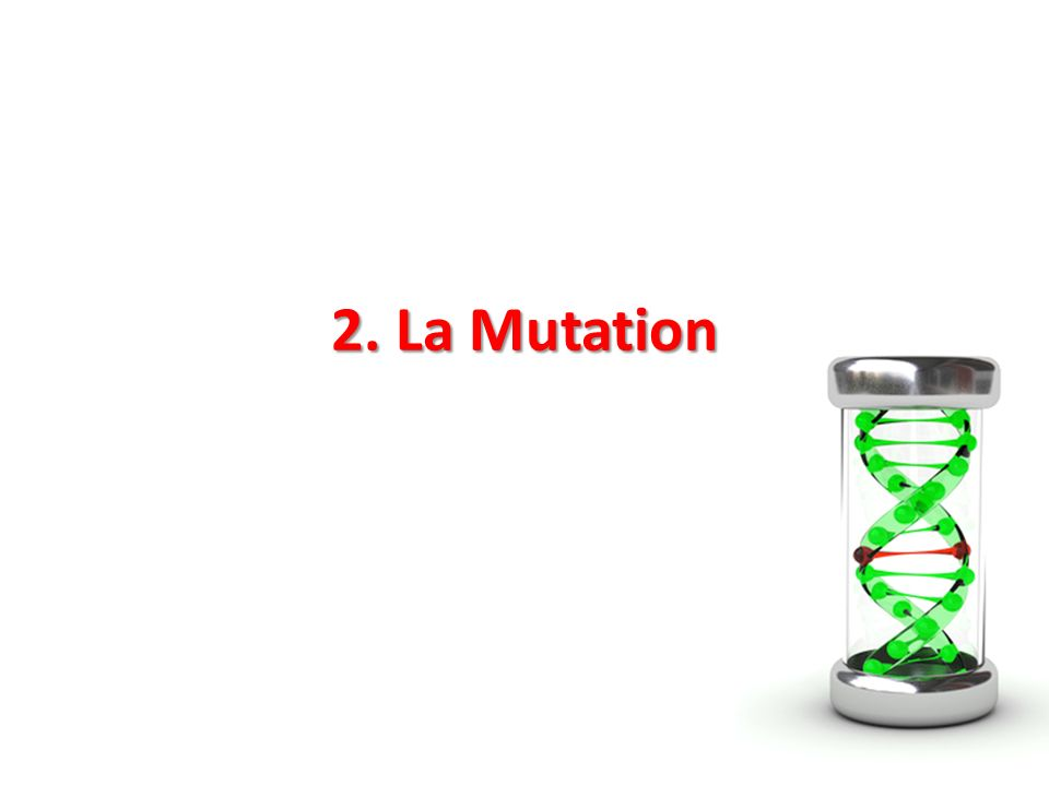 2. La Mutation © appler - Fotolia.com