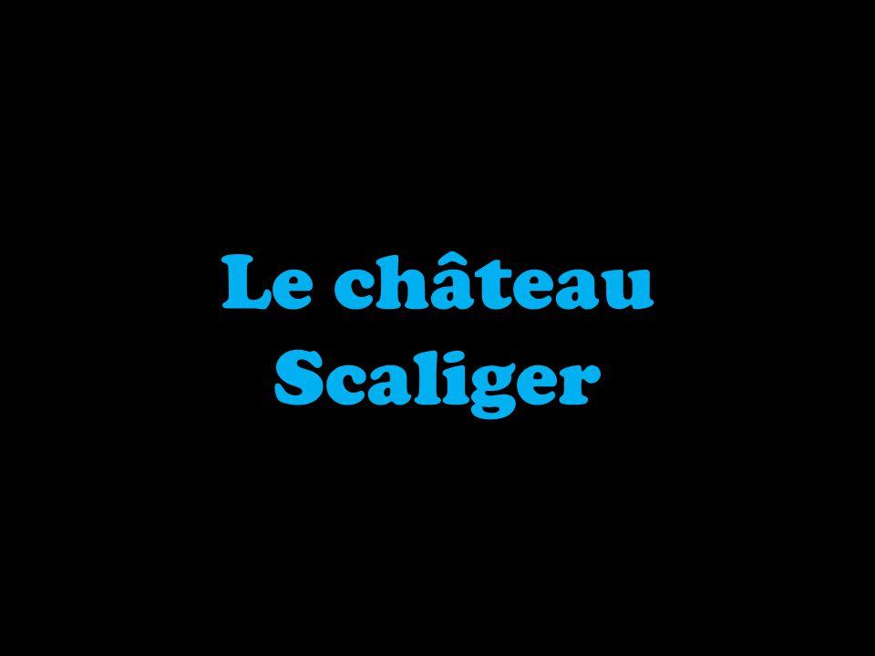 Le château Scaliger