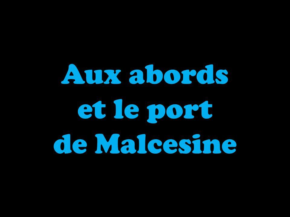Aux abords et le port de Malcesine
