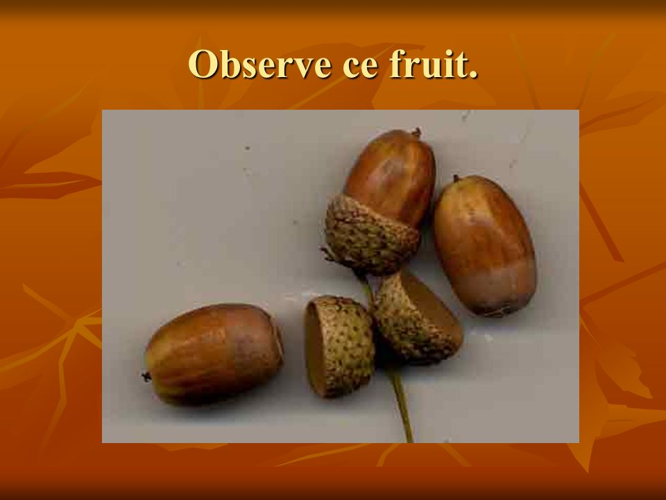 Observe ce fruit.