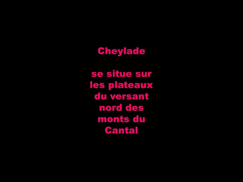 Cheylade se situe sur les plateaux du versant nord des monts du Cantal