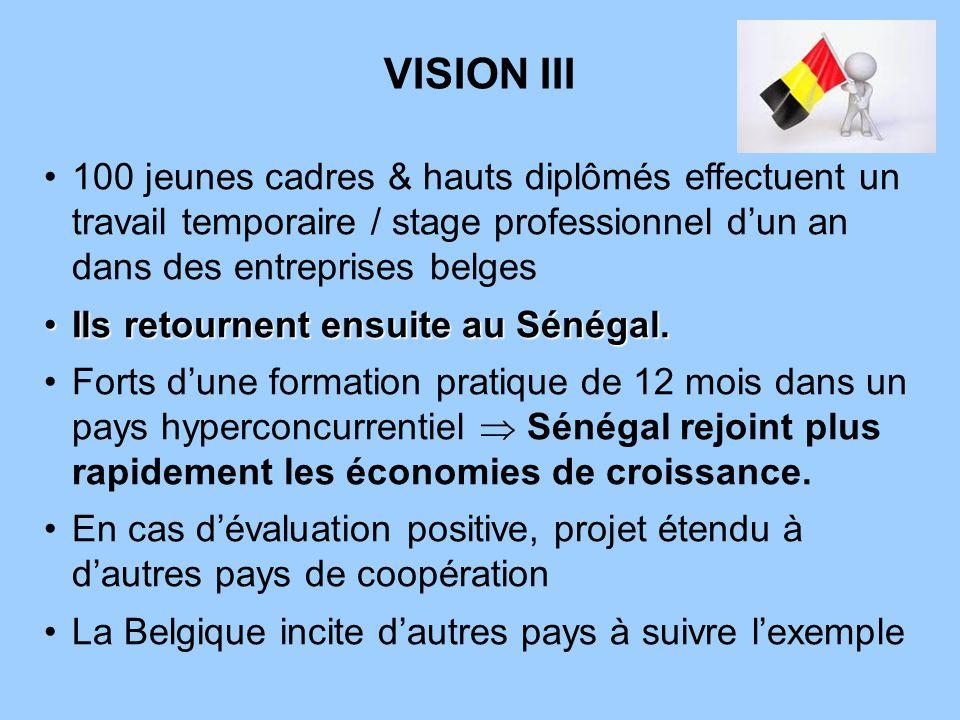 VISION III 100 jeunes cadres & hauts diplômés effectuent un travail temporaire / stage professionnel d'un an dans des entreprises belges.