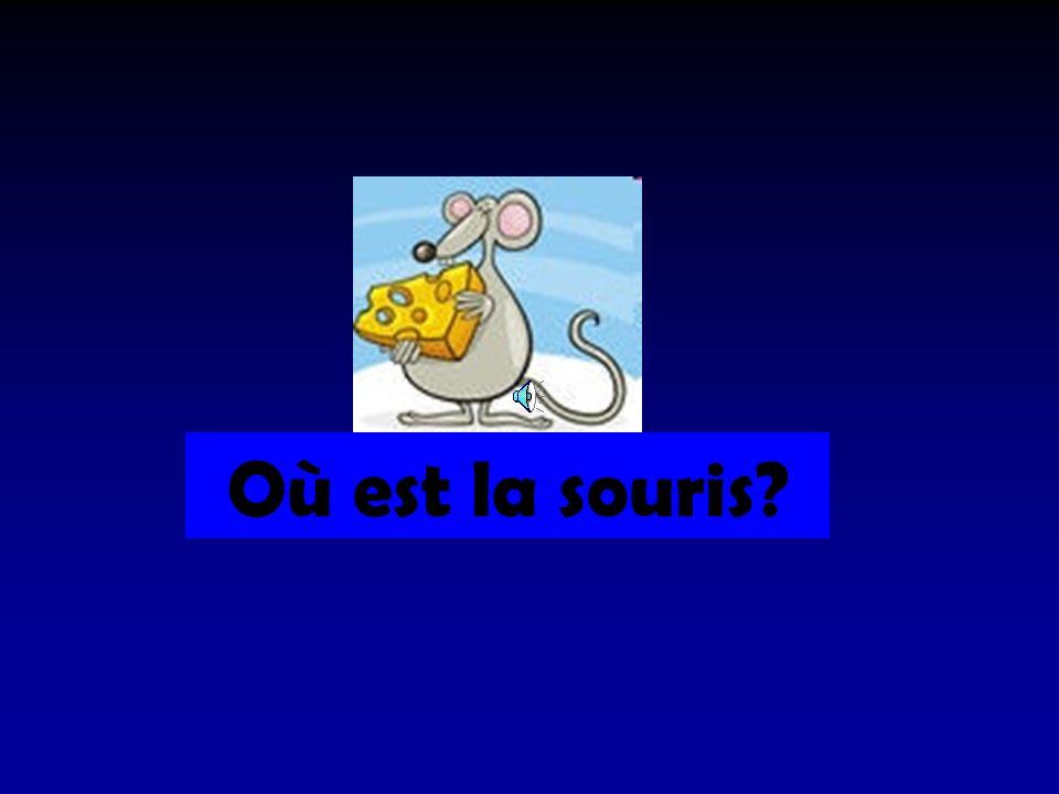 Où est la souris