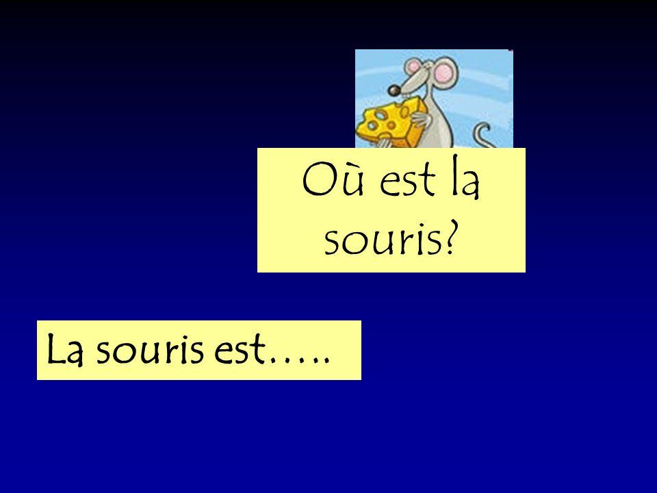 Où est la souris La souris est…..