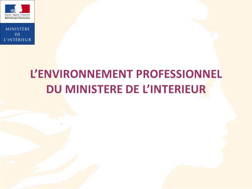 L'ENVIRONNEMENT PROFESSIONNEL DU MINISTERE DE L'INTERIEUR