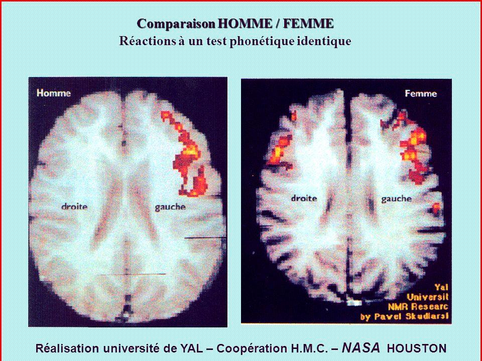 Comparaison HOMME / FEMME Réactions à un test phonétique identique