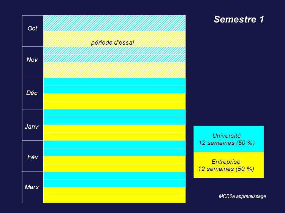 Semestre 1 Oct période d'essai Nov Déc Janv Université
