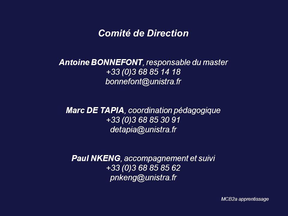 Comité de Direction Antoine BONNEFONT, responsable du master