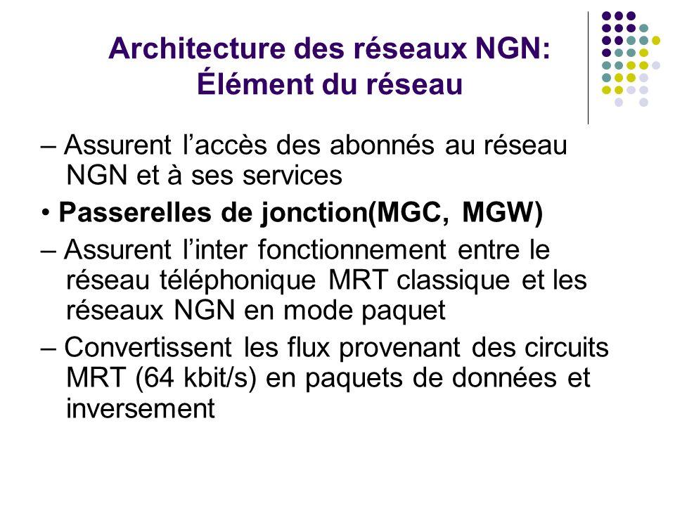 Architecture des réseaux NGN: Élément du réseau