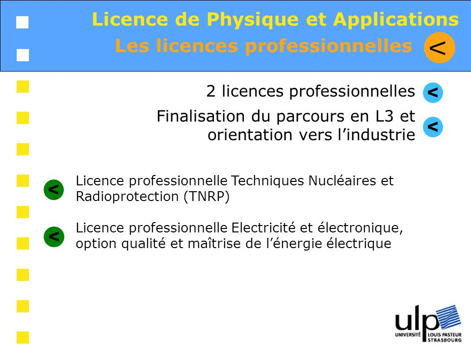 V Licence de Physique et Applications Les licences professionnelles