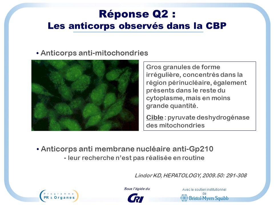 Réponse Q2 : Les anticorps observés dans la CBP
