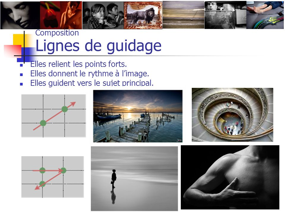 Composition Lignes de guidage