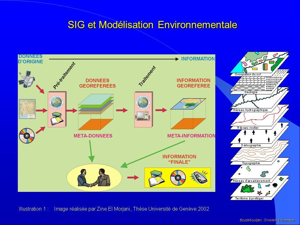 SIG et Modélisation Environnementale
