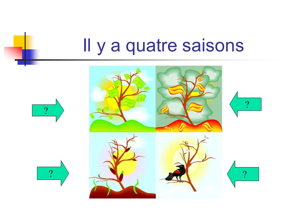 Il y a quatre saisons