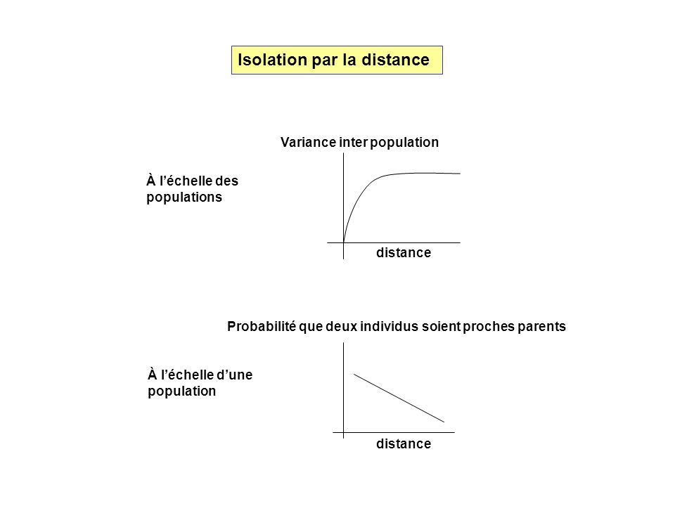Isolation par la distance