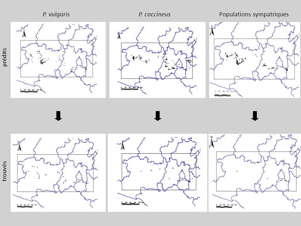 P. vulgaris prédits trouvés P. coccineus Populations sympatriques