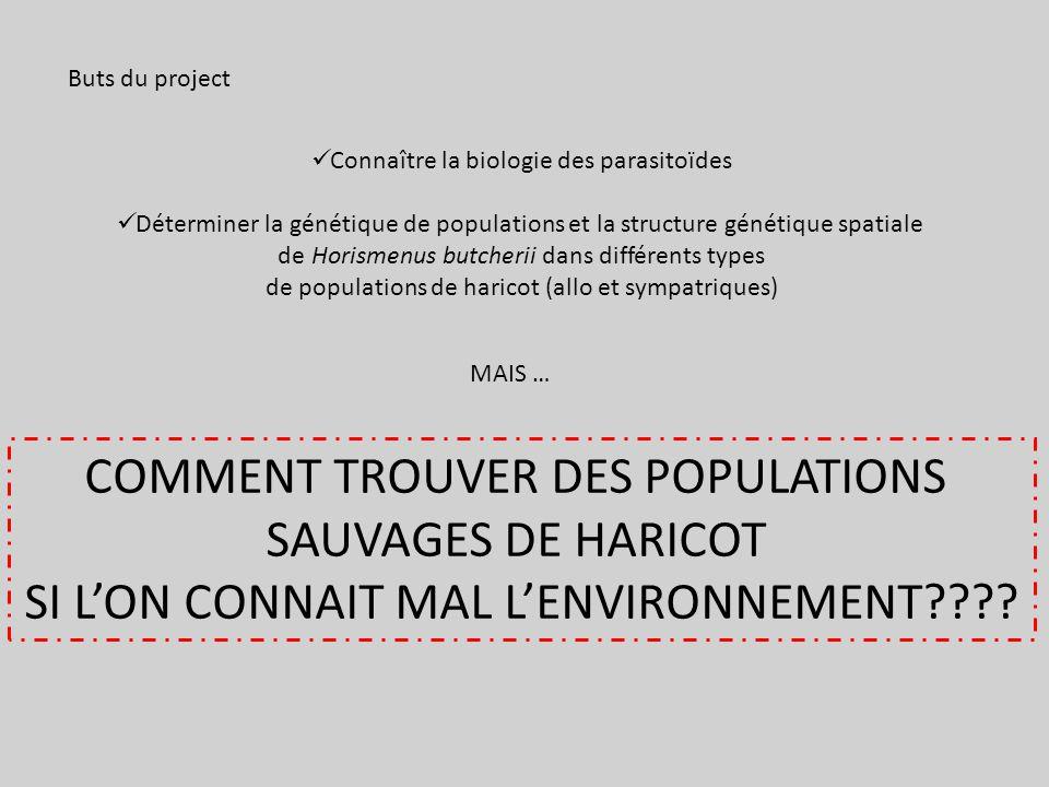 COMMENT TROUVER DES POPULATIONS SAUVAGES DE HARICOT