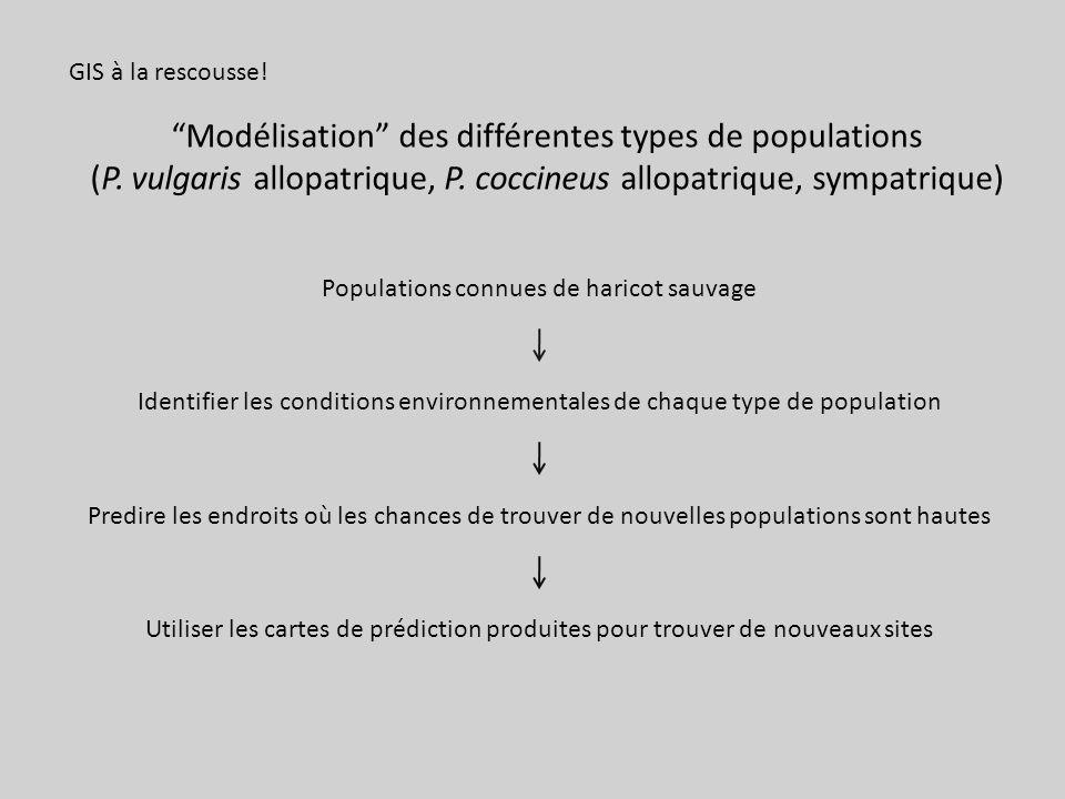 Modélisation des différentes types de populations
