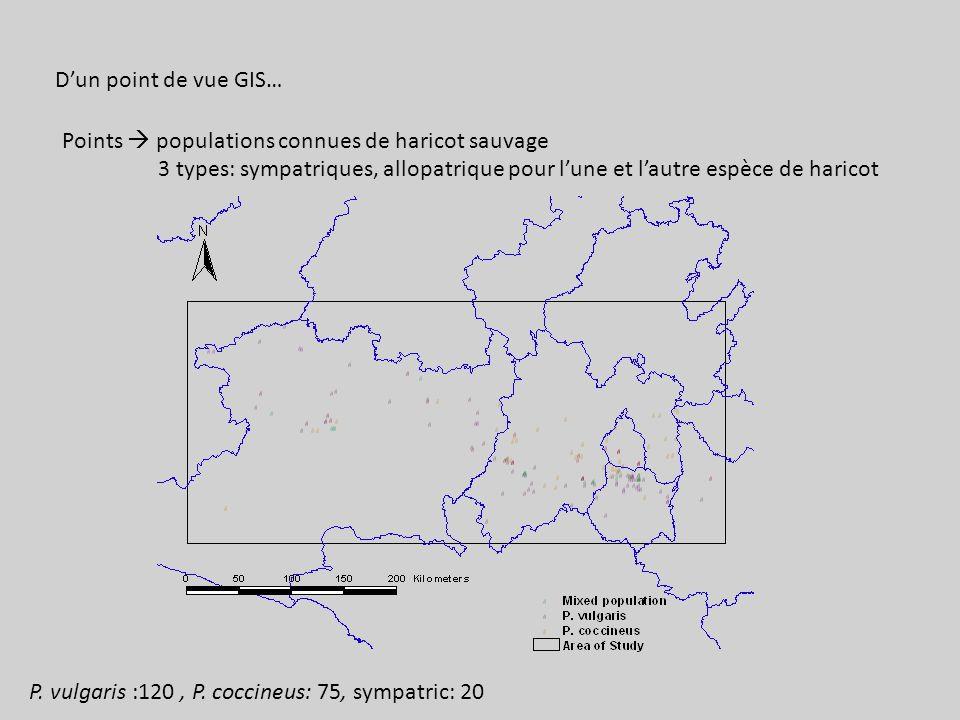 D'un point de vue GIS… Points  populations connues de haricot sauvage. 3 types: sympatriques, allopatrique pour l'une et l'autre espèce de haricot.
