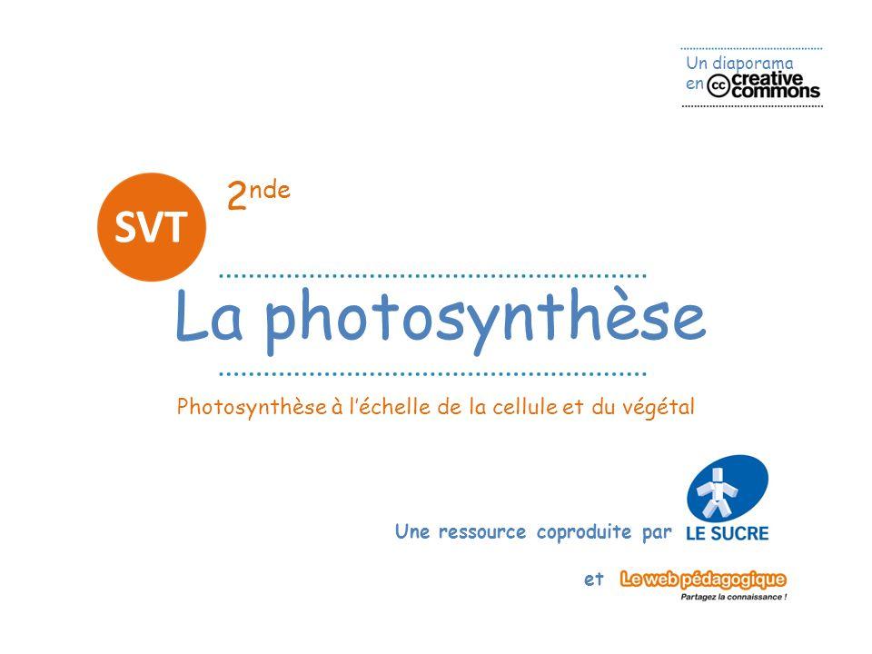 La photosynthèse SVT 2nde