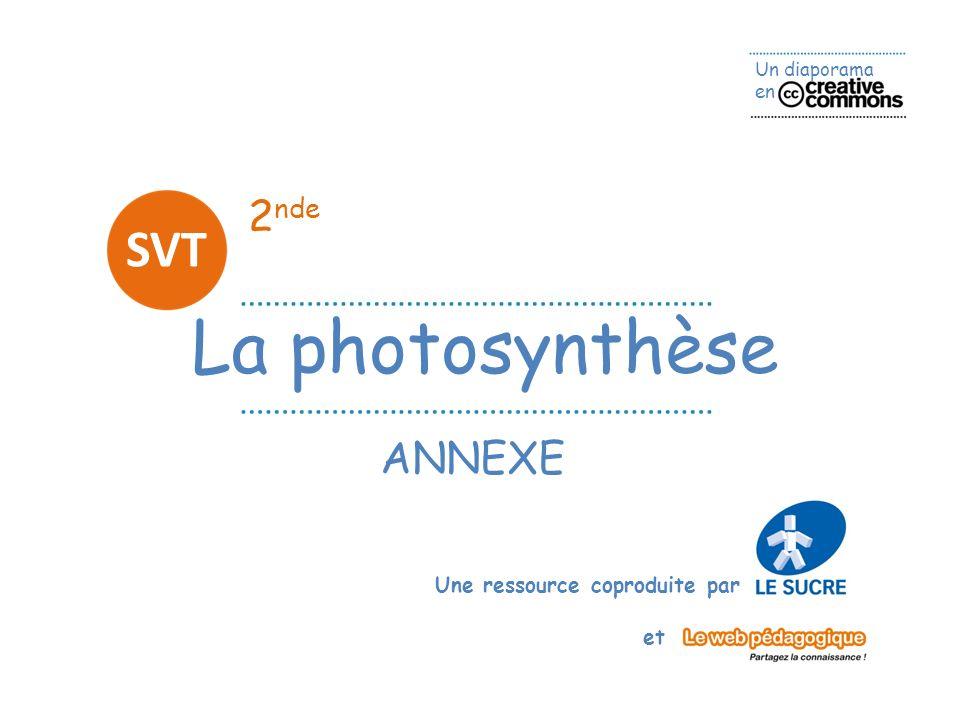 2nde SVT La photosynthèse ANNEXE