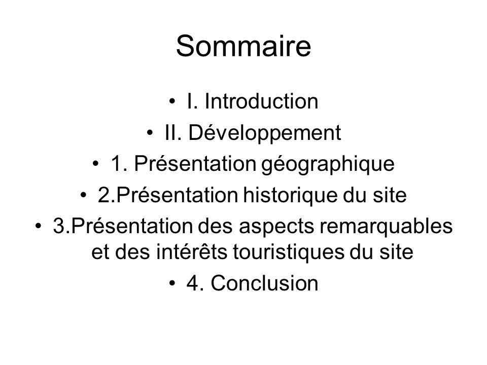 Sommaire I. Introduction II. Développement