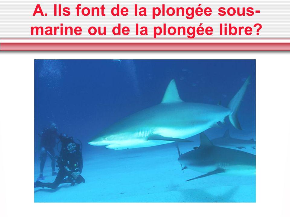 A. Ils font de la plongée sous-marine ou de la plongée libre