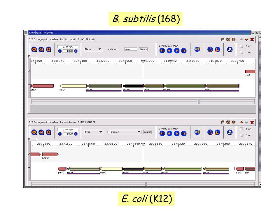 B. subtilis (168) E. coli (K12)