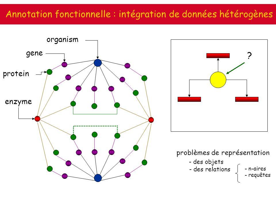 Annotation fonctionnelle : intégration de données hétérogènes