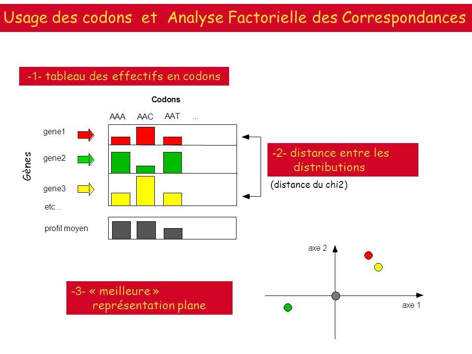Usage des codons et Analyse Factorielle des Correspondances