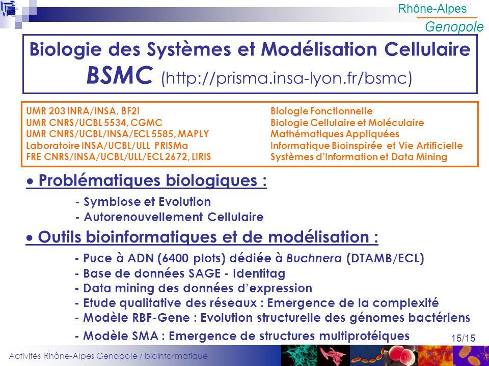 Biologie des Systèmes et Modélisation Cellulaire