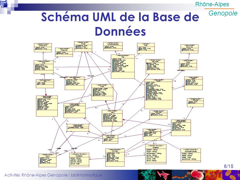 Schéma UML de la Base de Données