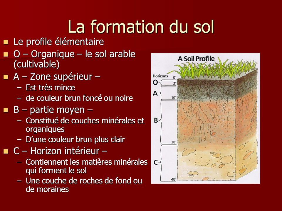 La formation du sol Le profile élémentaire