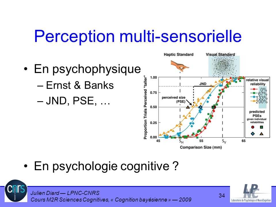 Perception multi-sensorielle