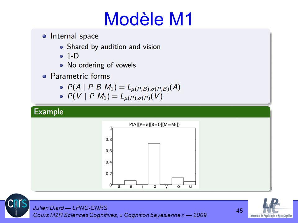 Modèle M1