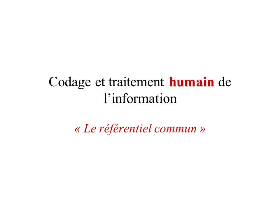Codage et traitement humain de l'information