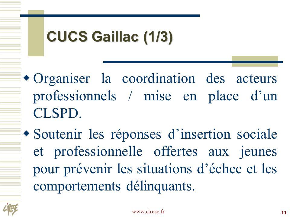 CUCS Gaillac (1/3) Organiser la coordination des acteurs professionnels / mise en place d'un CLSPD.