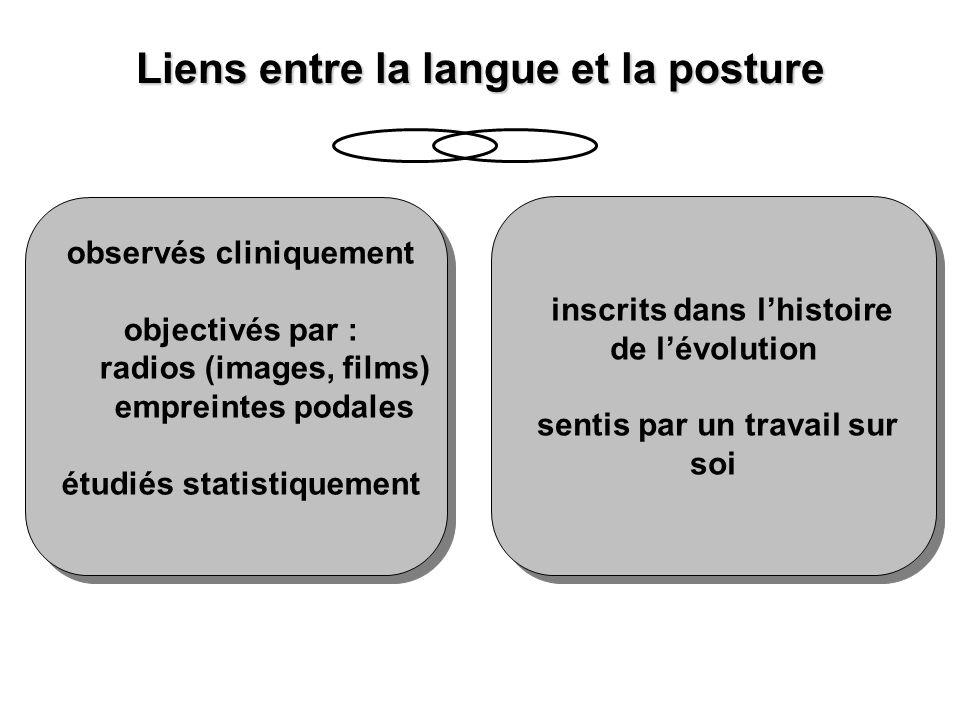 Liens entre la langue et la posture