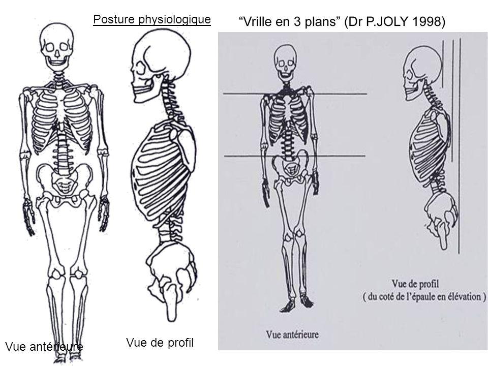 Posture physiologique