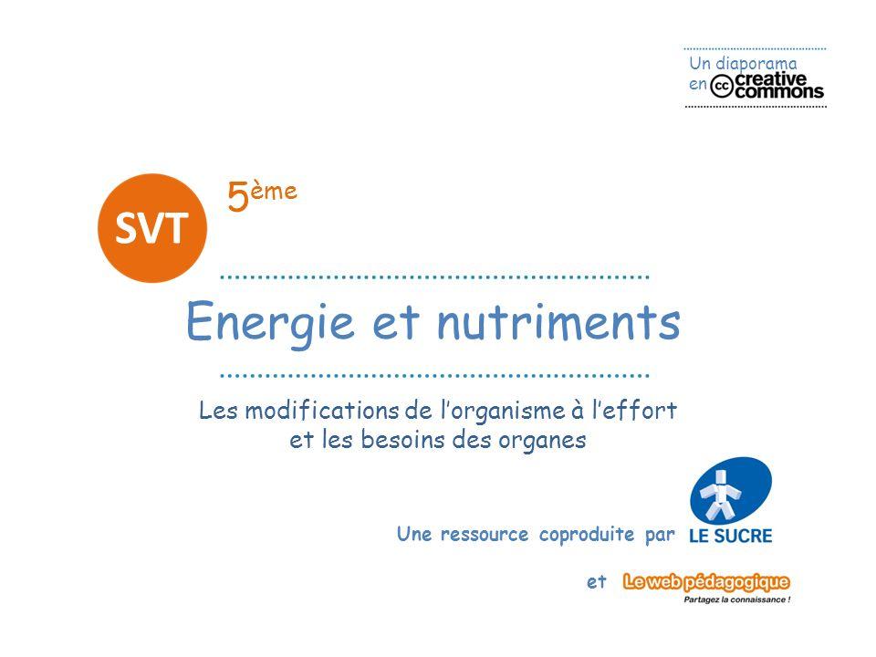 SVT Energie et nutriments 5ème