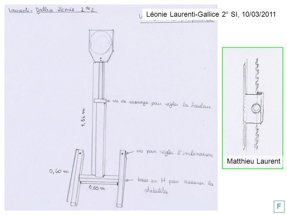 Léonie Laurenti-Gallice 2° SI, 10/03/2011