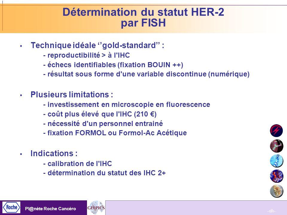Détermination du statut HER-2 par FISH
