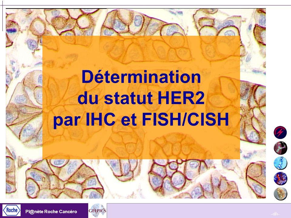 Détermination du statut HER2 par IHC et FISH/CISH