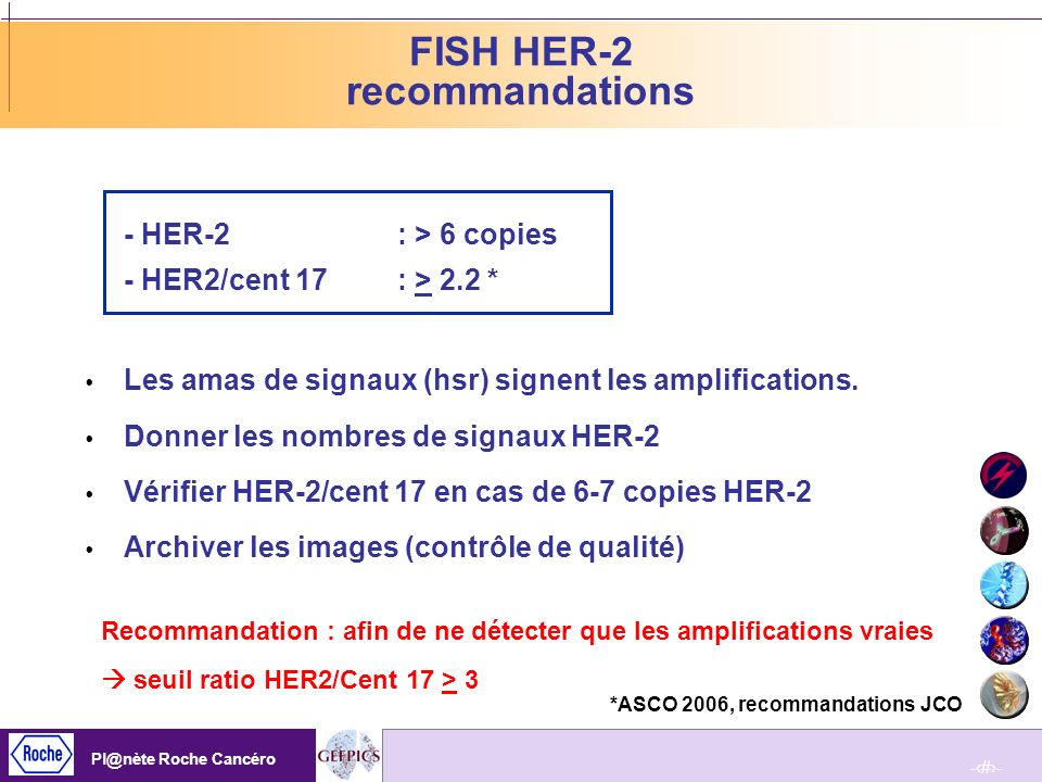 FISH HER-2 recommandations